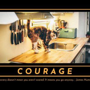courage-inspirational-pet-poster