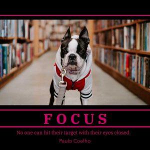 focus-inspirational-pet-poster