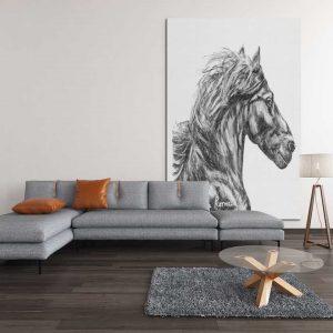 attitude-fine-art-print-equine-collection